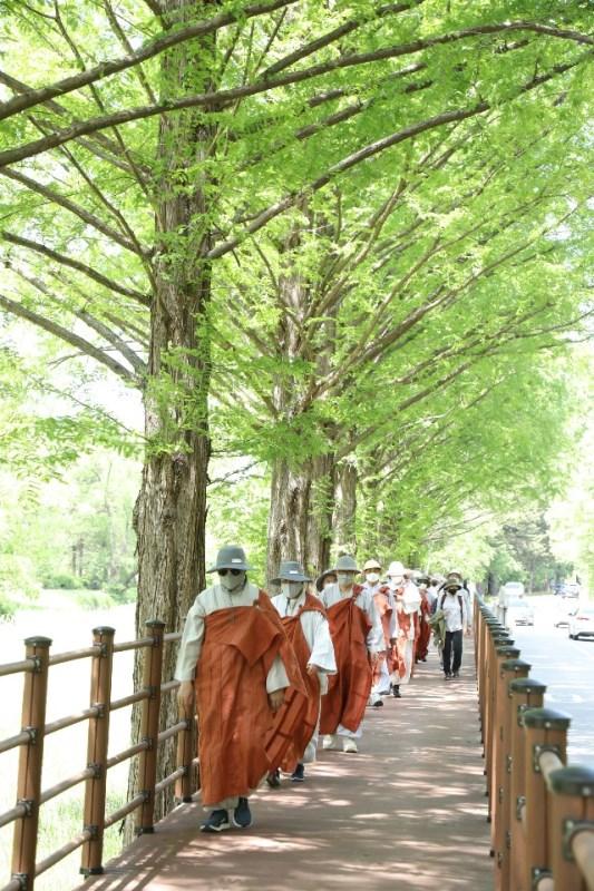 신록 우거진 광릉숲길과 자비순례단 모습.